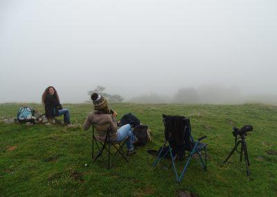 Observadores absorbidos por la niebla