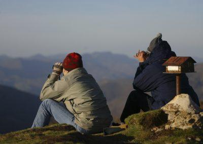 Observadores sentados