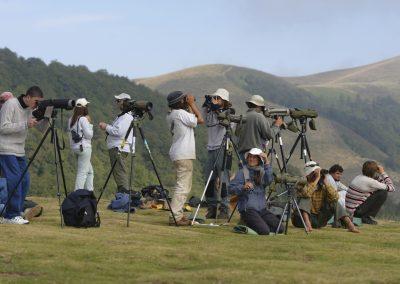 Grupo de observadores de día