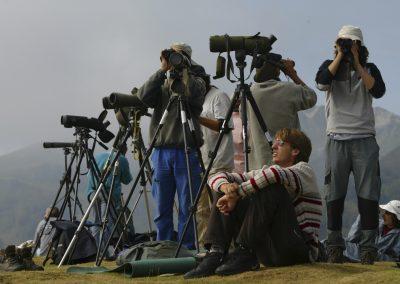Observadores en fila