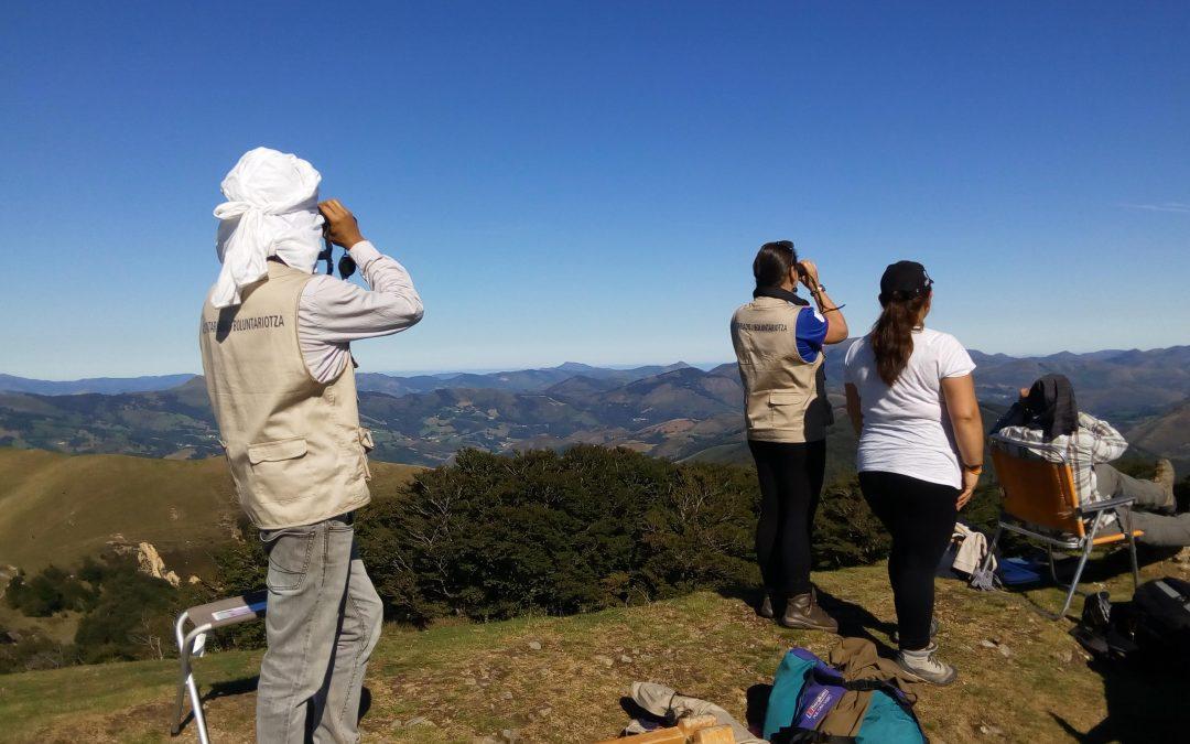 El calor marcó la jornada ornitológica en Auritz/Burguete